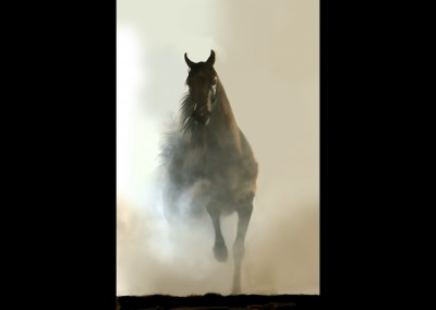 Misty Horse